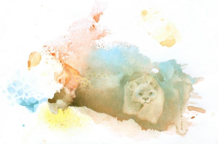 Белый медведь. Автор: L Filipe dos Santos.