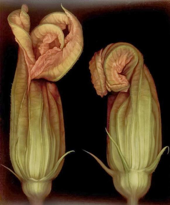 Зловещие цветы. Автор: Лариса Морейс.