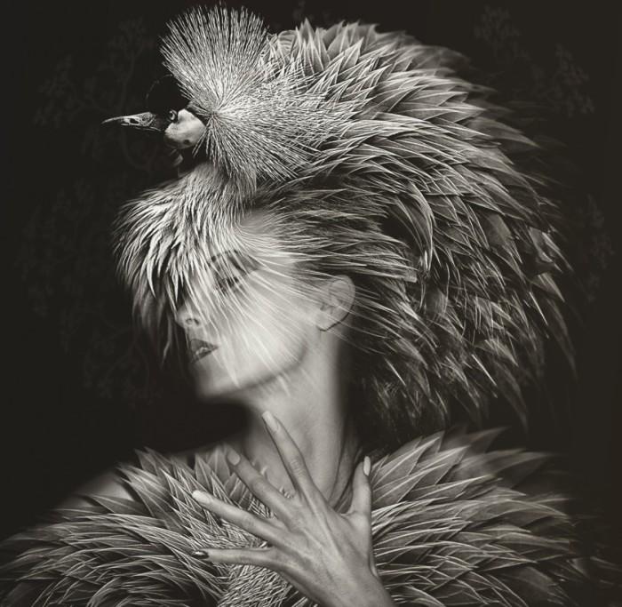 Невероятные образы девушек в птичьем оперение. Автор фото: Lee Howell.