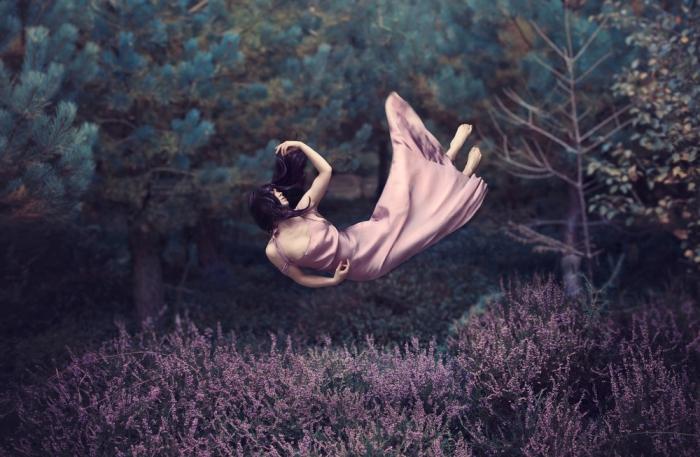 Лавандовое поле. Автор: Leigh Eros.