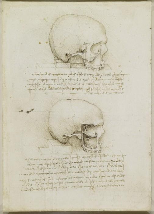 Анатомические эскизы, сопровождаемые подробными записями.  Леонардо да Винчи.