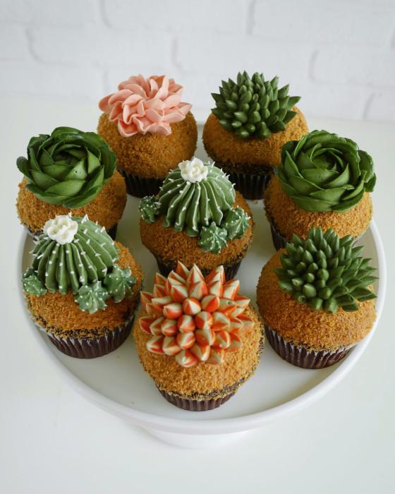 Пирожные-суккуленты, кактусы и цветочки. Автор: Leslie Vigil.