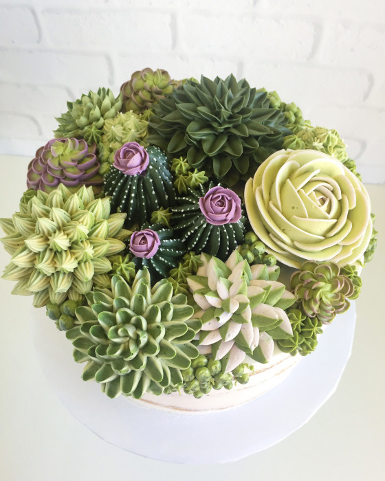 Съедобные кактусы и цветы. Автор: Leslie Vigil.