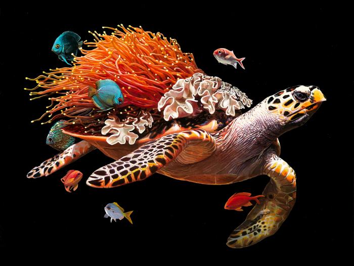 Большая черепаха. Автор: Lisa Ericson.