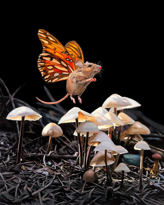 Волшебные грибы. Автор: Lisa Ericson.