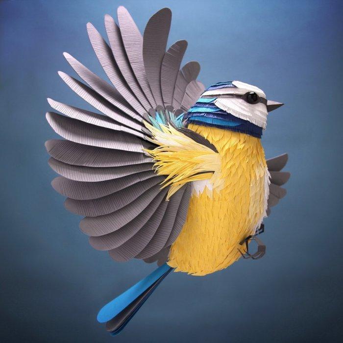 Птица-синица. Автор: Lisa Lloyd.