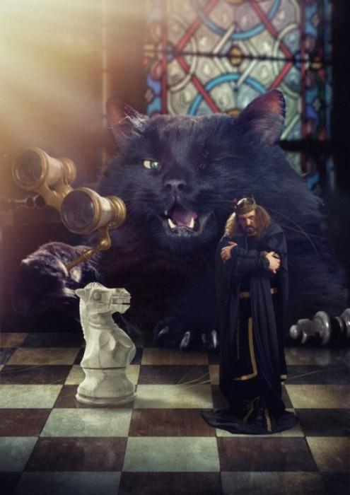 Кот, отставив от глаз бинокль, тихонько подпихнул своего короля в спину...