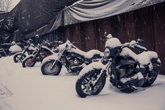 Зима в Осло  - не помеха. Автор фото: Marcel Lelienhof.