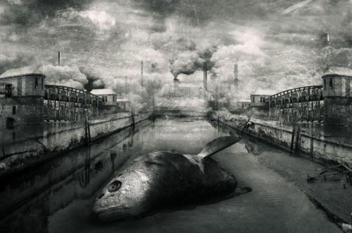 Глобальные проблемы XXI века. Мрачный сюрреализм в работах польского художника Марцина Овчарек (Marcin Owczarek).