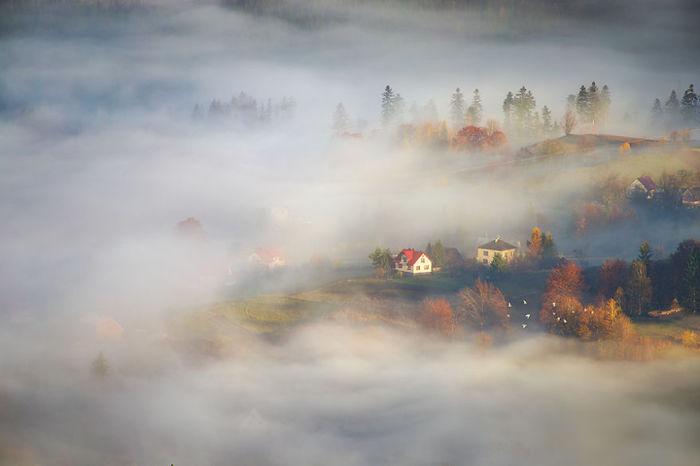 Different worlds. (Другие миры). Бескиды, Польша. Фото Marcin Sobas.