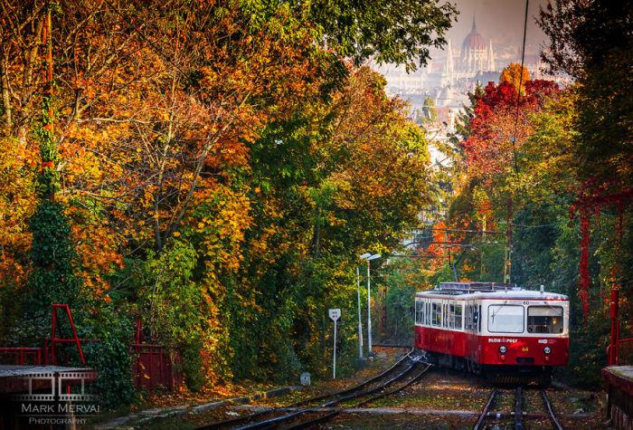 Осенняя прогулка. Автор: Mark Mervai.