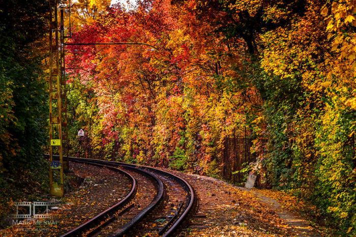 Разноцветная стена. Автор: Mark Mervai.