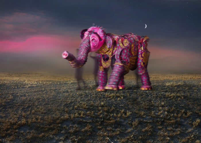 По улицам слона водили, как видно напоказ... Автор: Markku Lahdesmaki.