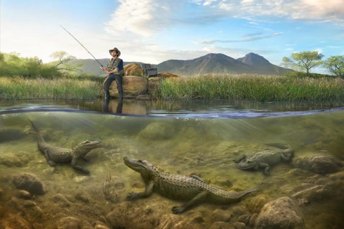 Необычная рыбалка. Автор: Markku Lahdesmaki.