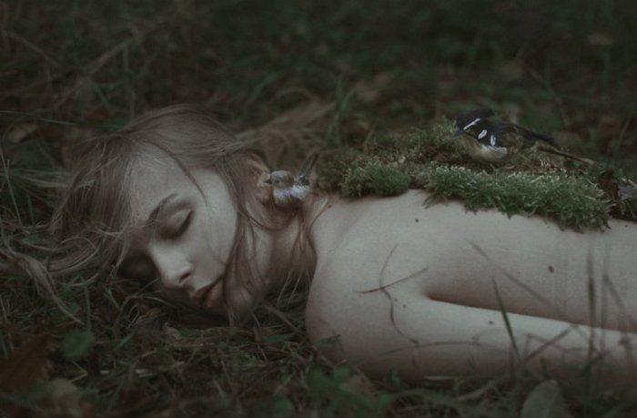 Гнездо. Marta Bevacqua.