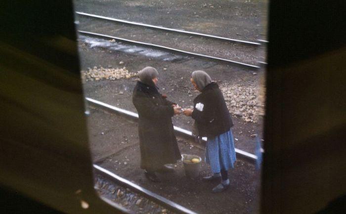 Снимок из окна поезда. Автор: Martin Manhoff.
