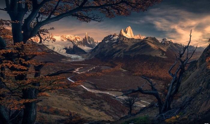 Осенний лес. Автор: Max Rive.