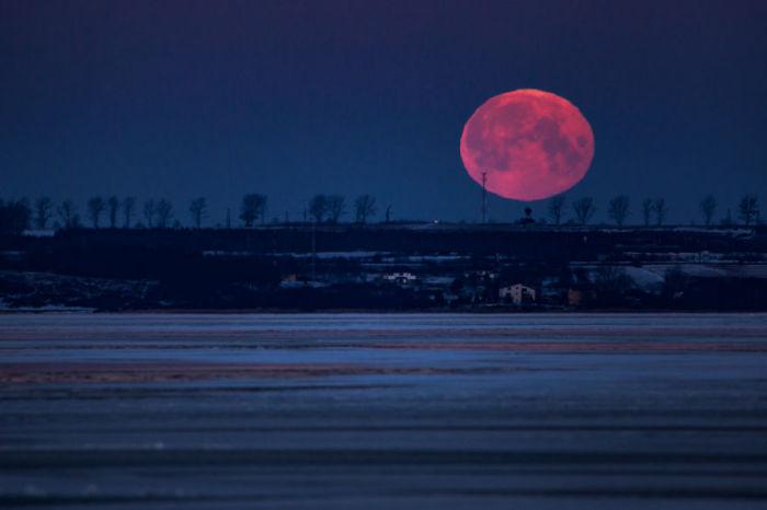 Красная луна. Автор: Michal Olech.