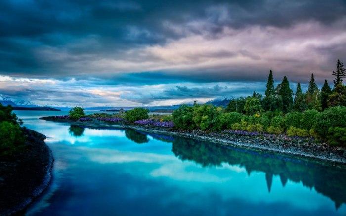 Природа. Новая Зеландия.
