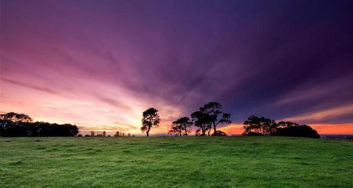 Пейзаж. Новая Зеландия.