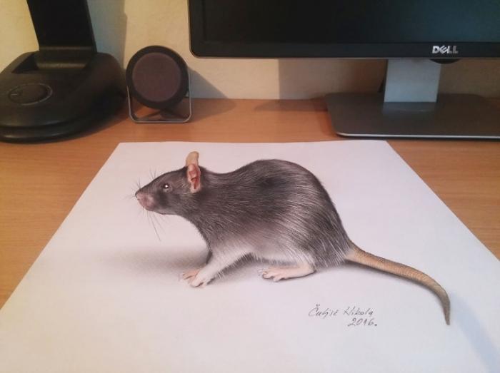 Крыса. Автор: Nikola Culijc.