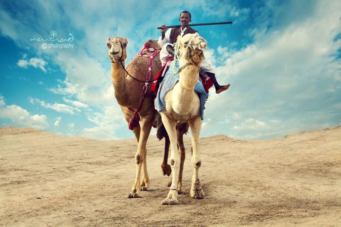 День в пустыне. Автор фото: Noushad GD.
