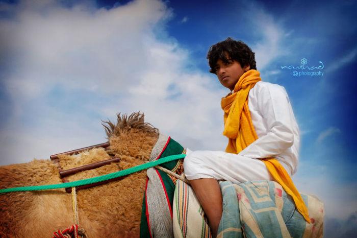 Верхом на верблюде. Автор фото: Noushad GD.