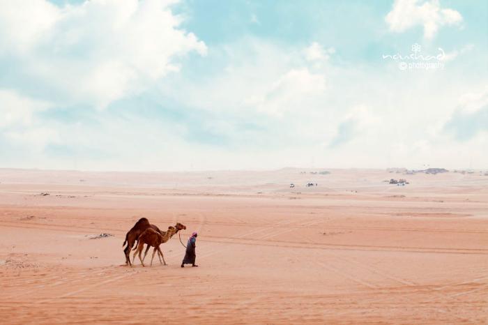 Розовые пески пустыни. Автор фото: Noushad GD.