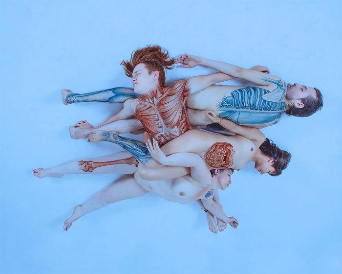 Анатомическое безумие, или наглядное пособие того, что находится у каждого внутри. Автор: Paola Rojas Н.