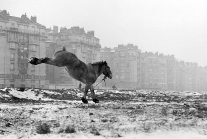 Порт-де-Ванв, 1951 год. Автор: Sabine Weiss.