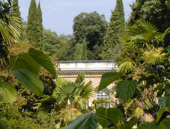 На территории сада находится множество экзотических растений. \ Фото: montpellier-france.com.