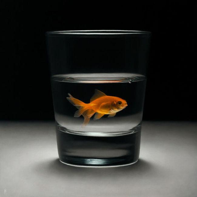 Рыбка исполняющая желания. Автор работы: Patrick Kramer.