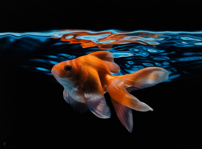 Золотая рыбка. Автор работы: Patrick Kramer.