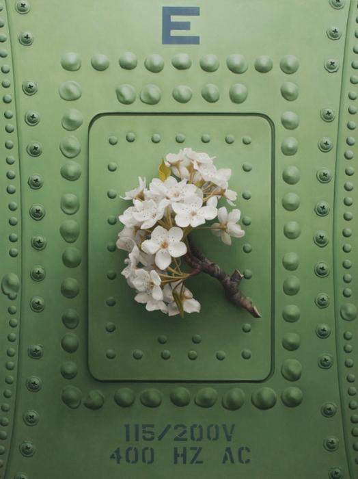 Абрикосовый цвет. Автор работы: Patrick Kramer.