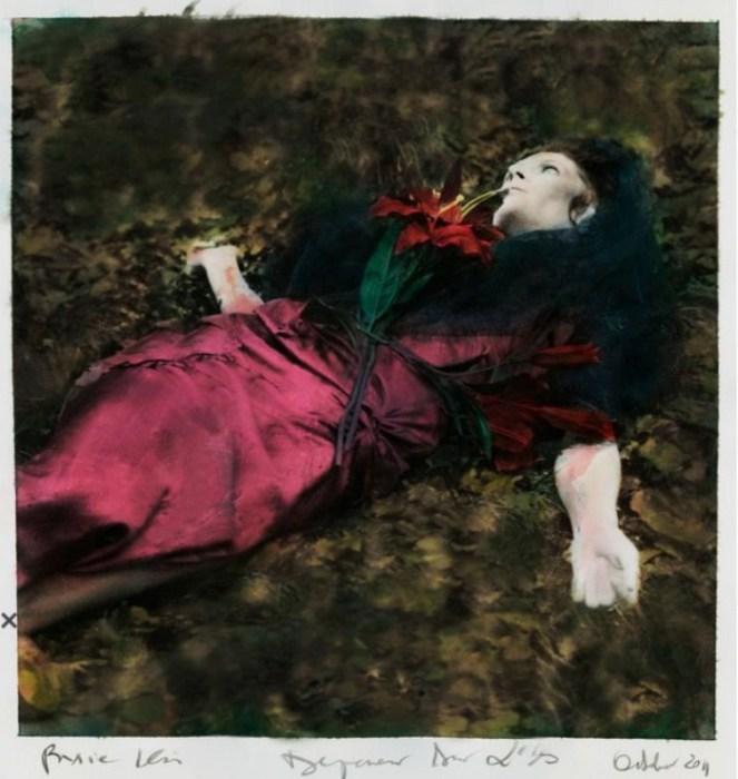 Картинные образы в винтажных работах Паулины Отилье Сурис (Paulina Otylie Surys).