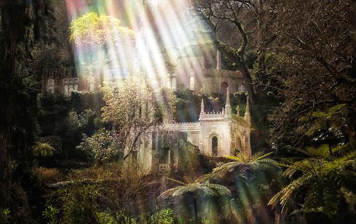 Волшебный свет. Quinta da Regaleira. Фото Taylor Moore.