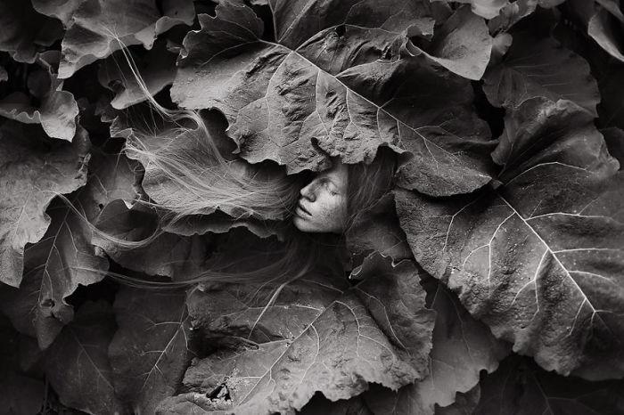 Затерявшаяся в листьях. Автор фото: Viktorija Rekasiute Raggana.