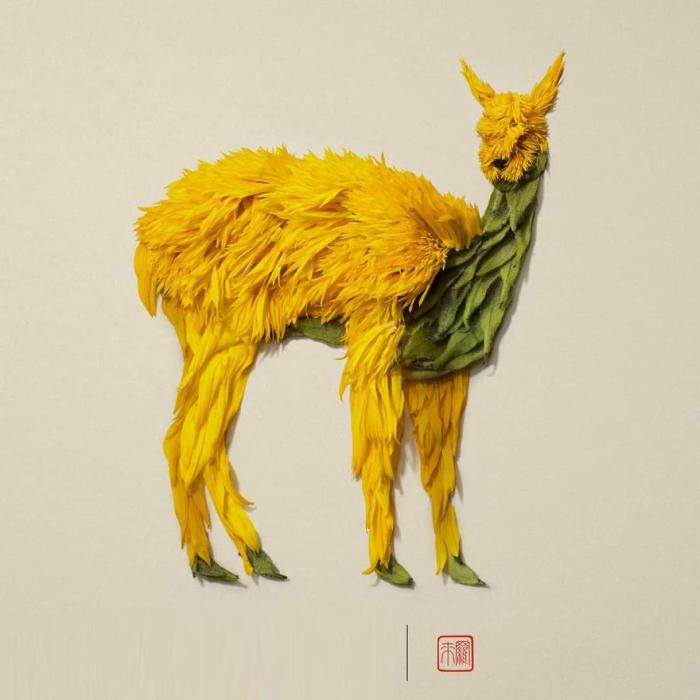 Лама. Автор: Raku Inoue.