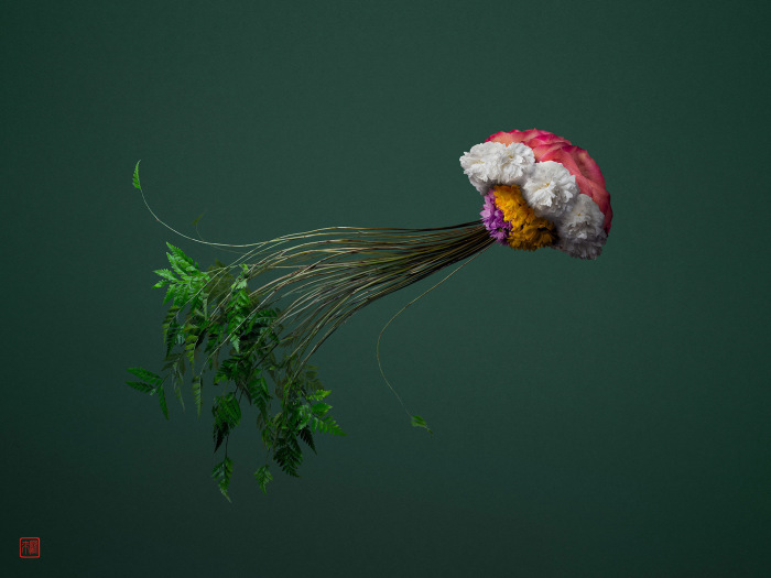 Медуза. Автор: Raku Inoue.