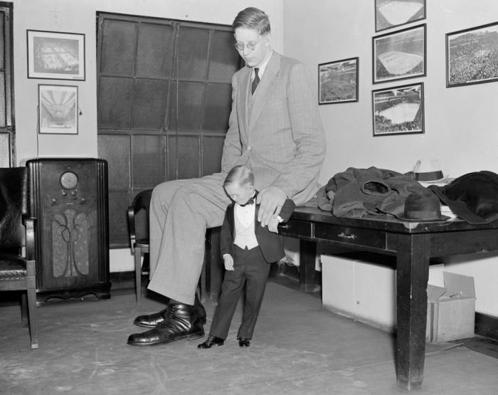 «Майор Клещ» сравнивает свою ногу и Уодлоу, 1937 год.