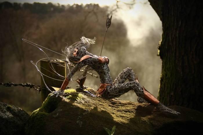 Пронзённая стрелой. Автор: Robin Wight.