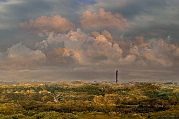 Дюны, Остров Нордерней. Автор: Sandra Roeken.