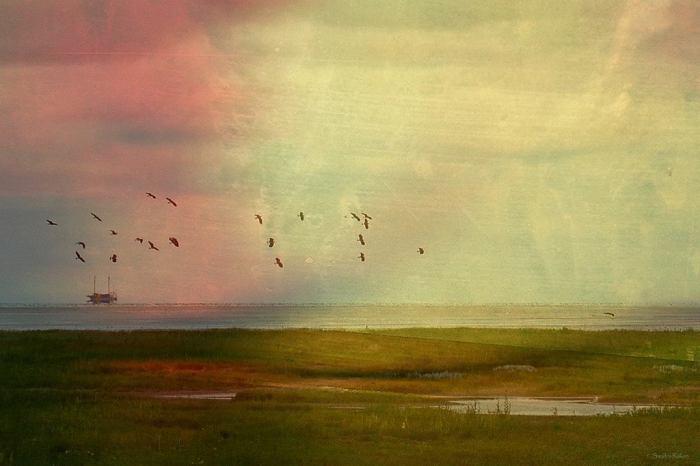 Тишина внутри и снаружи. Автор: Sandra Roeken.