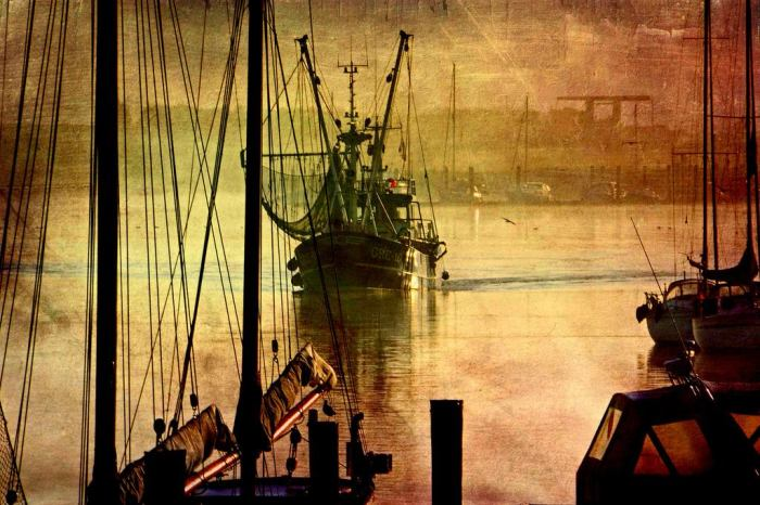 Возвращаясь в гавань. Автор: Sandra Roeken.