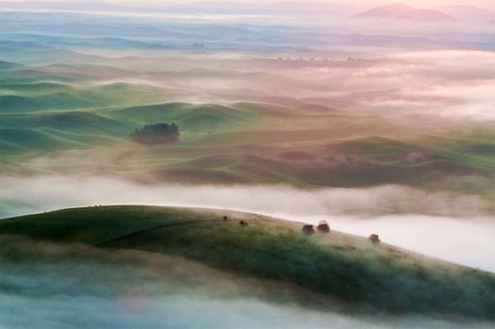 Шотландия, гористый район. Великолепие тумана.