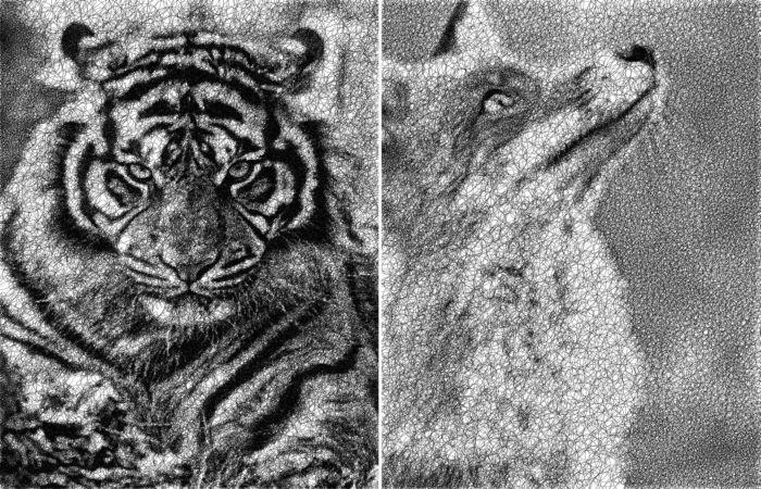Одной единой линией или рисунки, придуманные программистом Сергеем Стоппель.