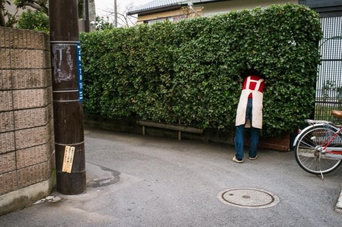 У каждого свой вход в Нарнию. Автор: Shin Noguchi.