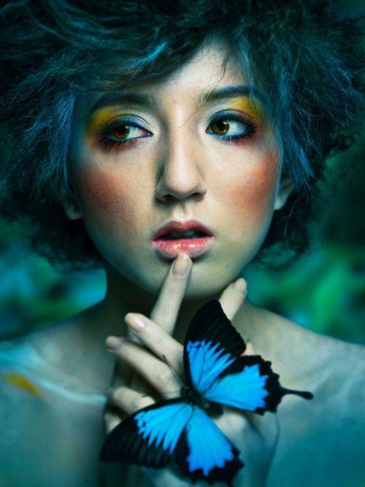 Тайна бабочки. Автор: Shinji Watanabe.