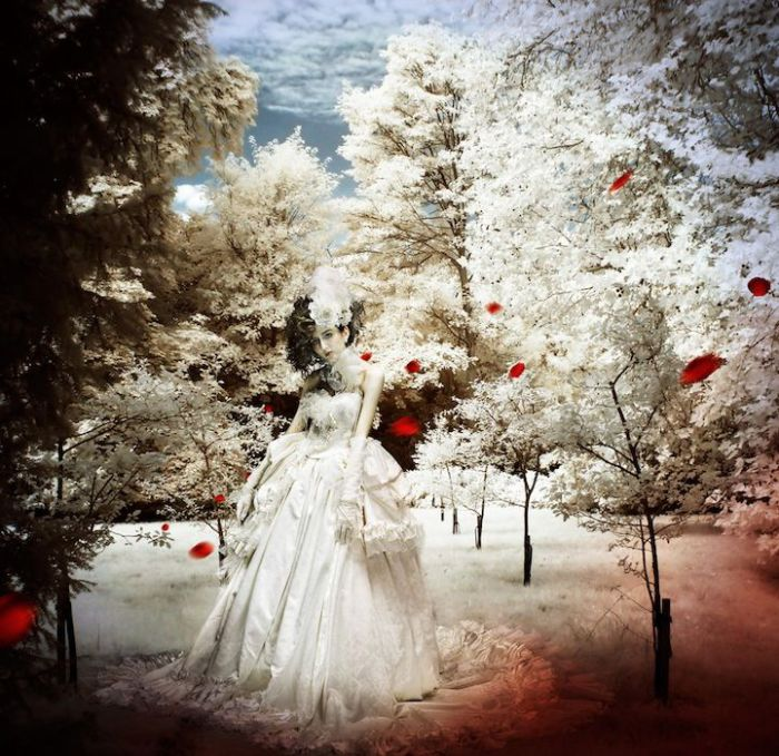 Свадебное платье. Автор: Shinji Watanabe.