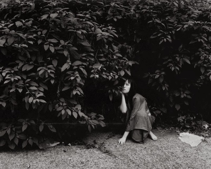 В тени листвы. Автор фото: Шинья Аримото (Shinya Arimoto).